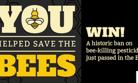 EU Bans Bee Killing Neonic Pesticides !!!