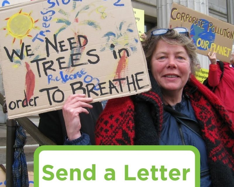 Send a Letter: Burning Trash and Biomass is Not Renewable Energy